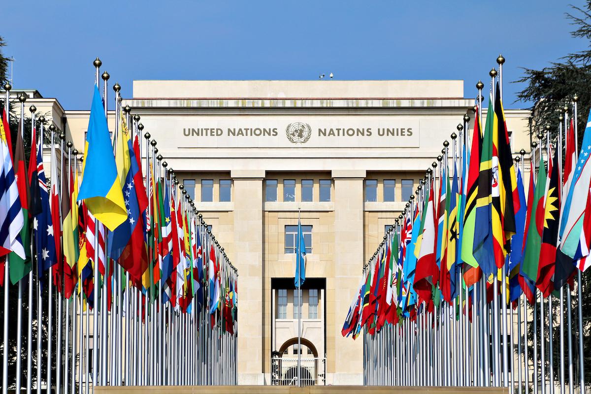 BM'den Türkiye raporu: Kayyum insan hakları ihlalidir...
