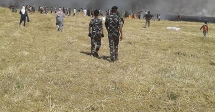 Türkiye destekli gruplar Kürtlerin ekinlerini yaktı