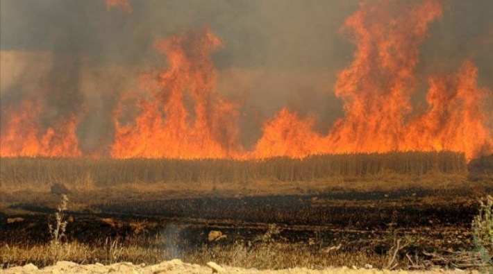 Irak Sivil Savunma kurumu:  Kürdistani bölgelerde 550 dönüm alan yakıldı