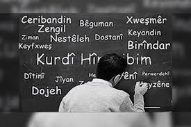 Japonya | Tokyo mezunları, Kürtçe çevirilere başladı...