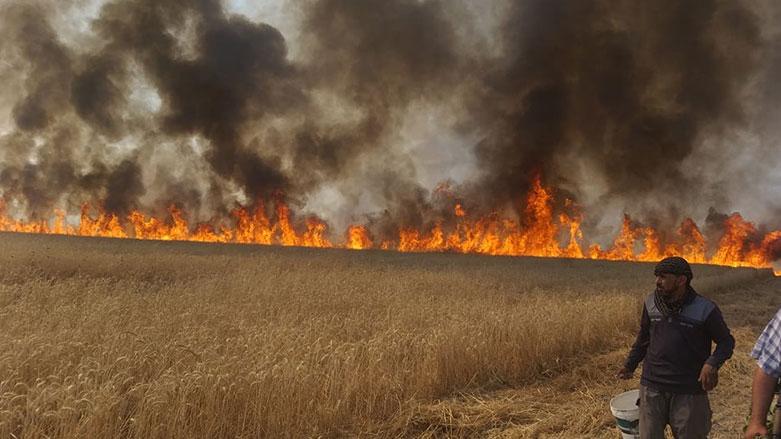 Kürdistani | Xaneqin'de Kürt çiftçilerin arazileri ateşe verildi